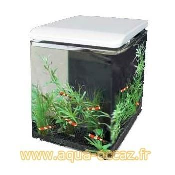 aquarium 8 litres