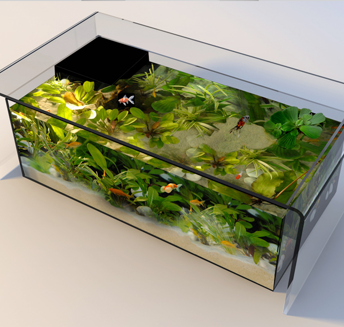 aquarium table de salon