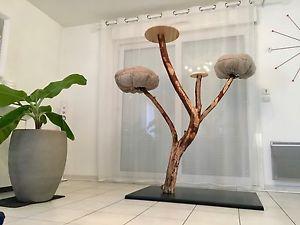 arbre chat naturel