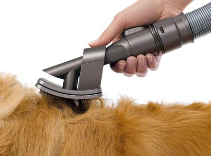 aspirateur poil chien