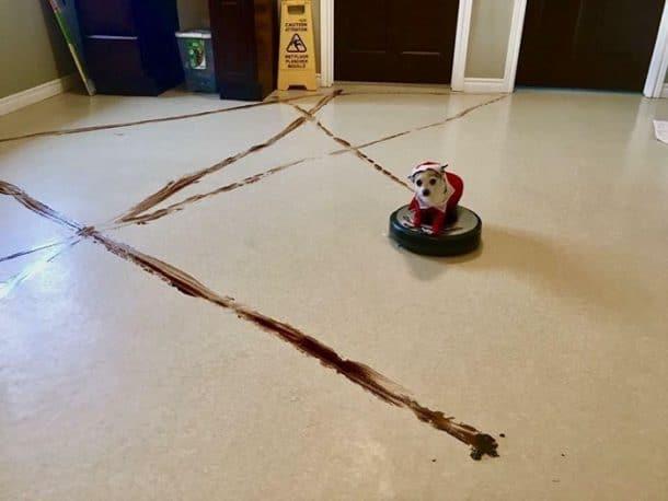 aspirateur robot chien
