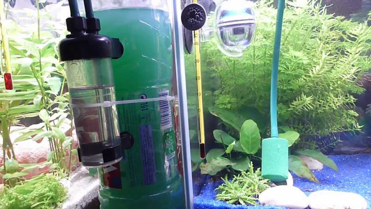 diffuseur co2 aquarium
