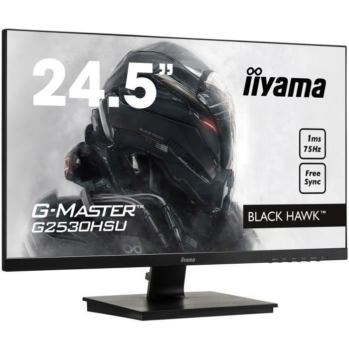 ecran ordinateur iiyama